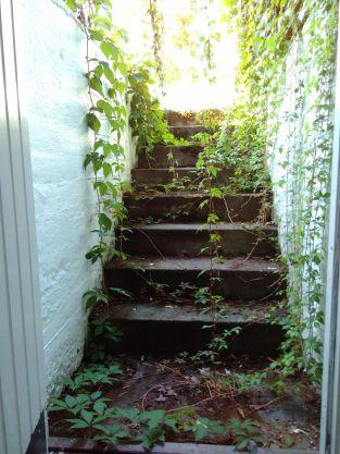 trappa etter sommeren